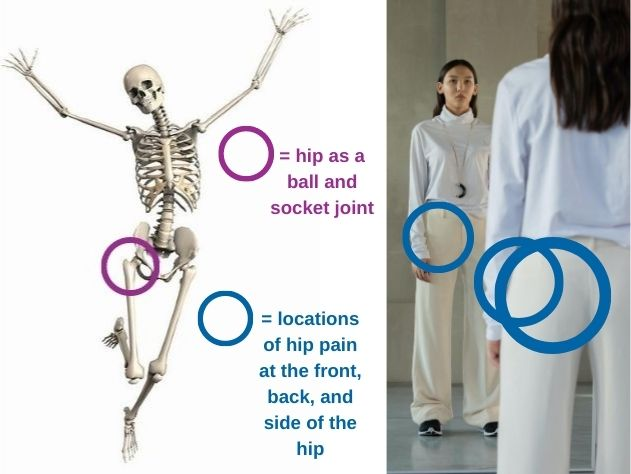 hip-joint-and-hip-pain